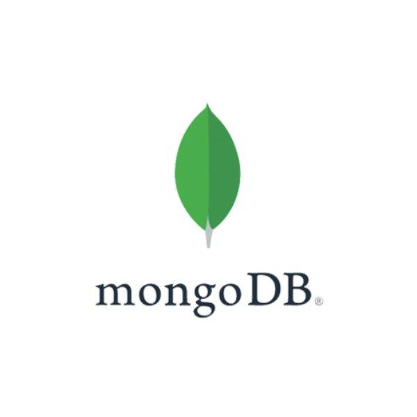 mongo-db-wordmark-wht-600sq